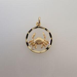 14 Karaat gouden sterrenbeeld hanger